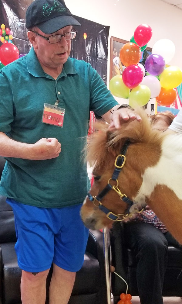 right-choice-adult-day-care-miniature-horse-therapy