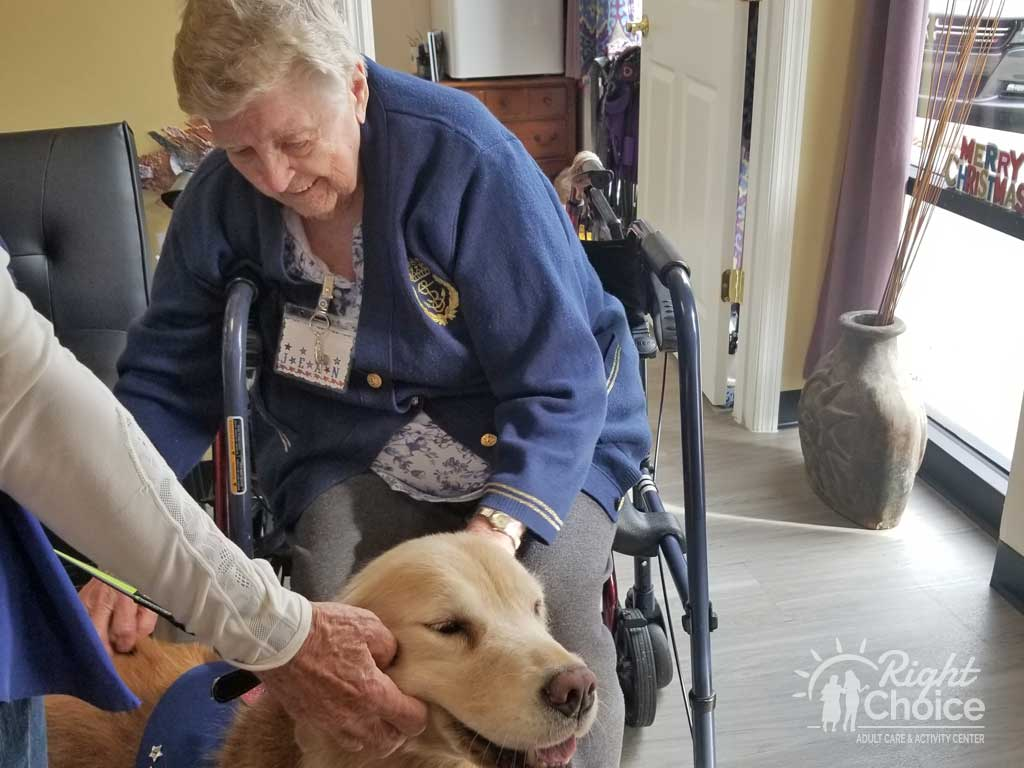 right-choice-pet-therapy-days